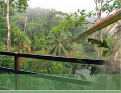 Rainforest lodges, Costa Rica